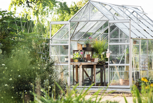 greenhouse in a yard
