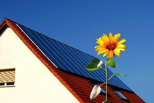 Solar panels steeply-sloping red roof with sunflower in foreground.