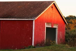 red barn in glowing sunlight