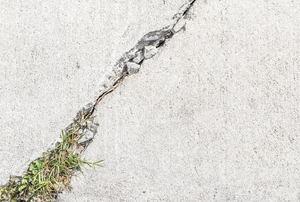A cracked sidewalk.