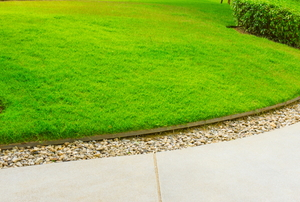 A well cared for lawn.