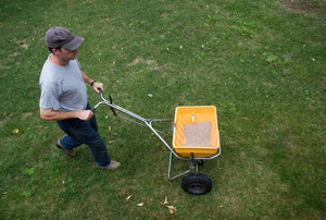 A man fertilizing a lawn.