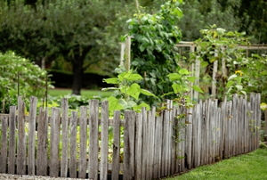 A rustic wooden fence surrounding a garden.