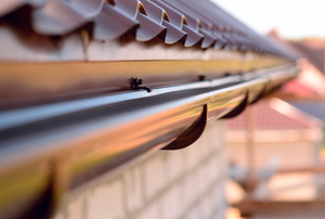 A length of rain gutter secured to the eaves of a roof.