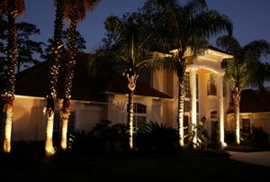 A Florida home at night with landscape lighting.