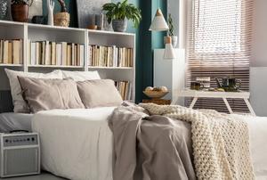 A bookshelf bed.