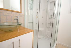 A standing shower with a fiberglass interior.