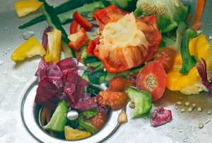 Fruit and vegetables in a garbage disposal.