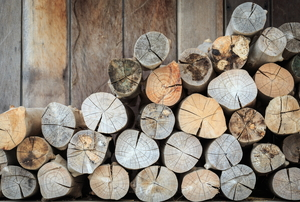 Logs in a row.