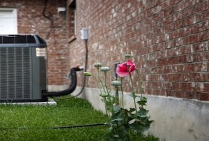 An HVAC system appliance outside a brick building and next to a white door and pink rose