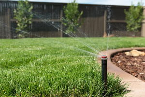 The Advantages of Timed Irrigation Systems