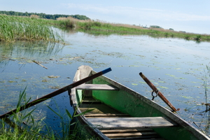 Homemade Boat: Build a Small Row Boat
