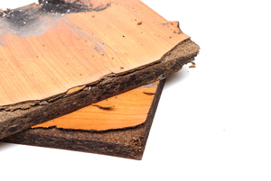 Particle Board Water Damage: Dos and Don'ts