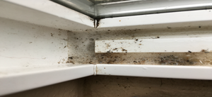 How to Clean Window Frames and Runners in 4 Steps