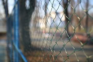 Make an Affordable Chicken Wire Fence