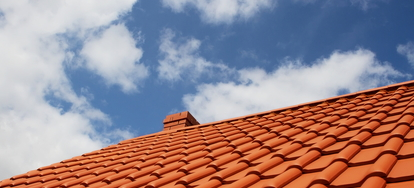How to Keep Birds from Nesting Under Tile Roofs