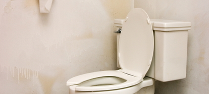 3 ways to treat toilet tank mold doityourself comwhile a negligible amount of mold spores are likely floating around the air in every home, the mold that can grow inside your toilet tank or bowl