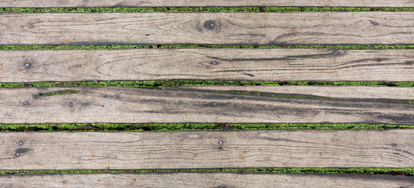 How To Remove Moss From Your Deck