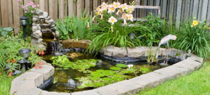 How to keep a pool pump clean for Do it yourself koi pond