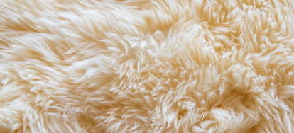How To Clean A Sheepskin Rug Doityourself Com