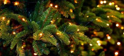 decorations make your home come alive with the spirit of the holidays nothing encourages warmth and coziness like twinkling multi colored lights tinsel