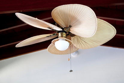 If Your Baby Is Fascinated With Ceiling Fan Don T Fret This Perfectly Normal And Can Even Be Very Convenient For Pas