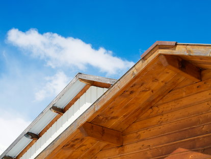 Keep Carpenter Bees Away From Your Home | DoItYourself com