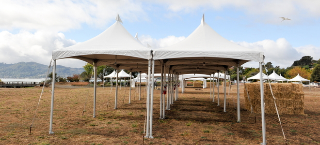 Canopies are used for many purposes including outdoor weddings and parties. However weather can take a drastic turn in no time. : used canopies - memphite.com