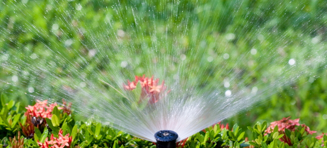 Choose The Right Sprinkler System For Your Yard