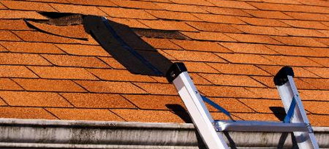 Vents For Removing Moisture From A Leaking Roof