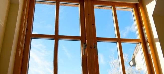 A sunny window on a cold day.