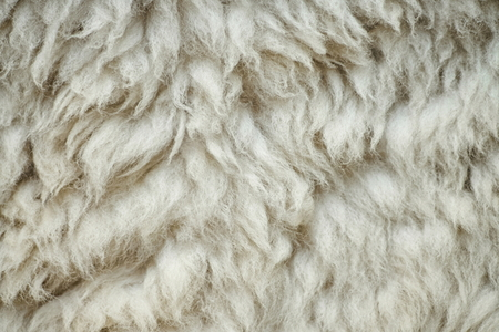 How To Prevent A Wool Area Rug From Shedding