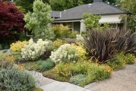 An Introduction To Xeriscaping Doityourself Com