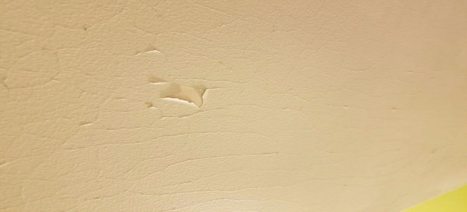 Hot Topics Shower Ceiling Paint Cracking And Peeling