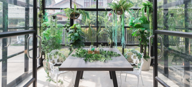 large greenhouse with plants on a table