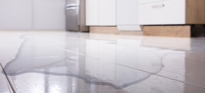 puddle on a kitchen floor