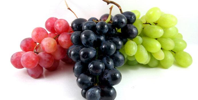 grape_000003495719_Small.jpg
