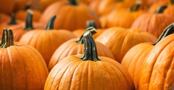31_PumpkinRecipes.jpg