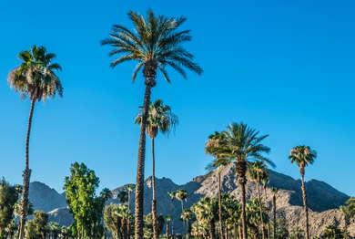 The Ritz Carlton, Rancho Mirage Expert Review | Fodor's Travel