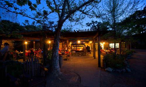 Savannah Cafe and Grill at Night