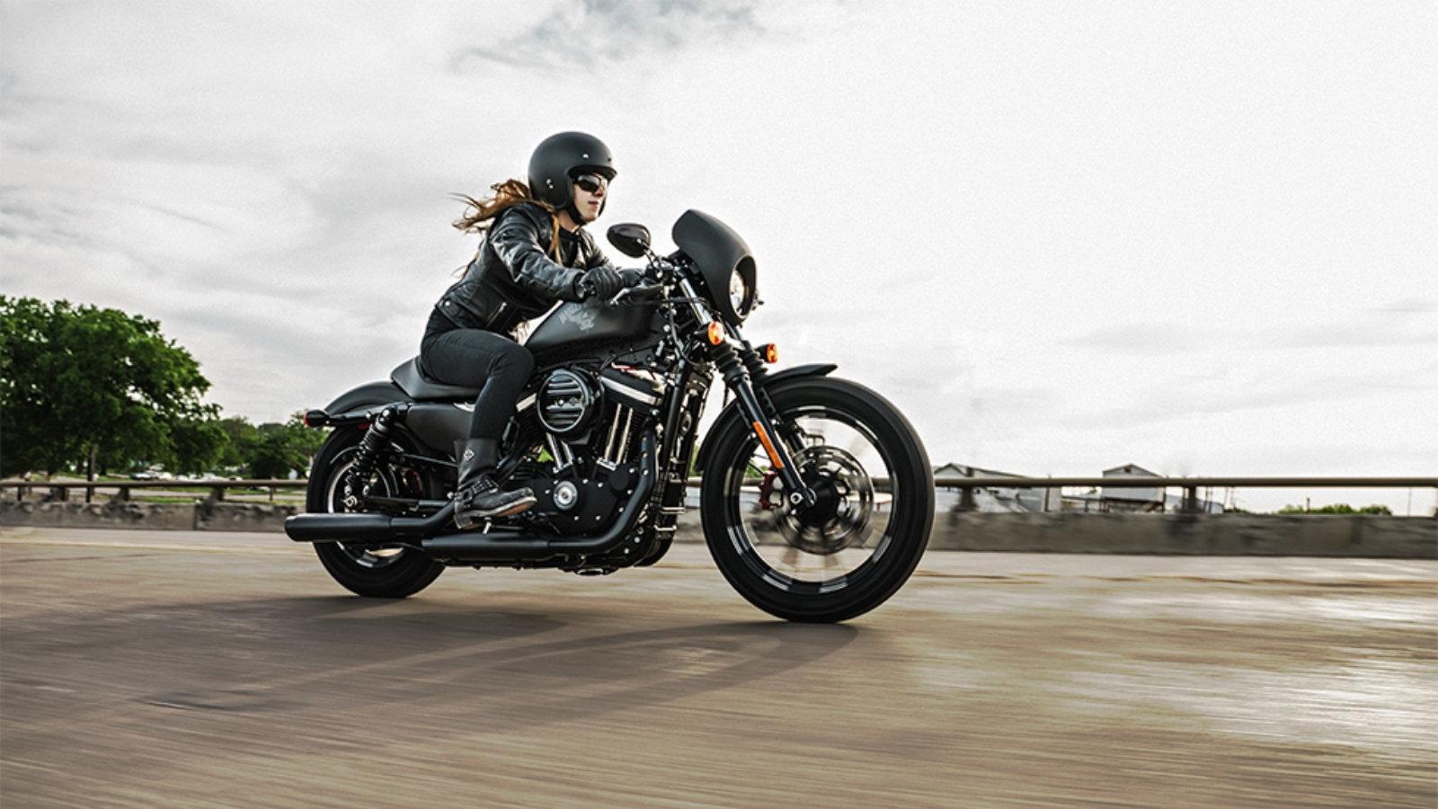 The Harley-Davidson Catalog Cafe Racer Custom Sportster