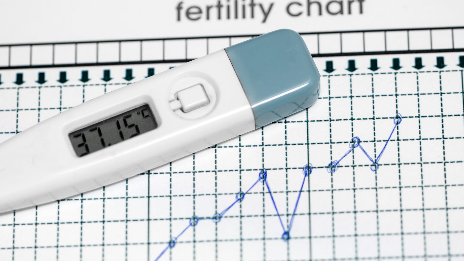fertility chart showing ovulation