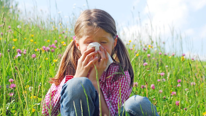 child with allergies blowing nose