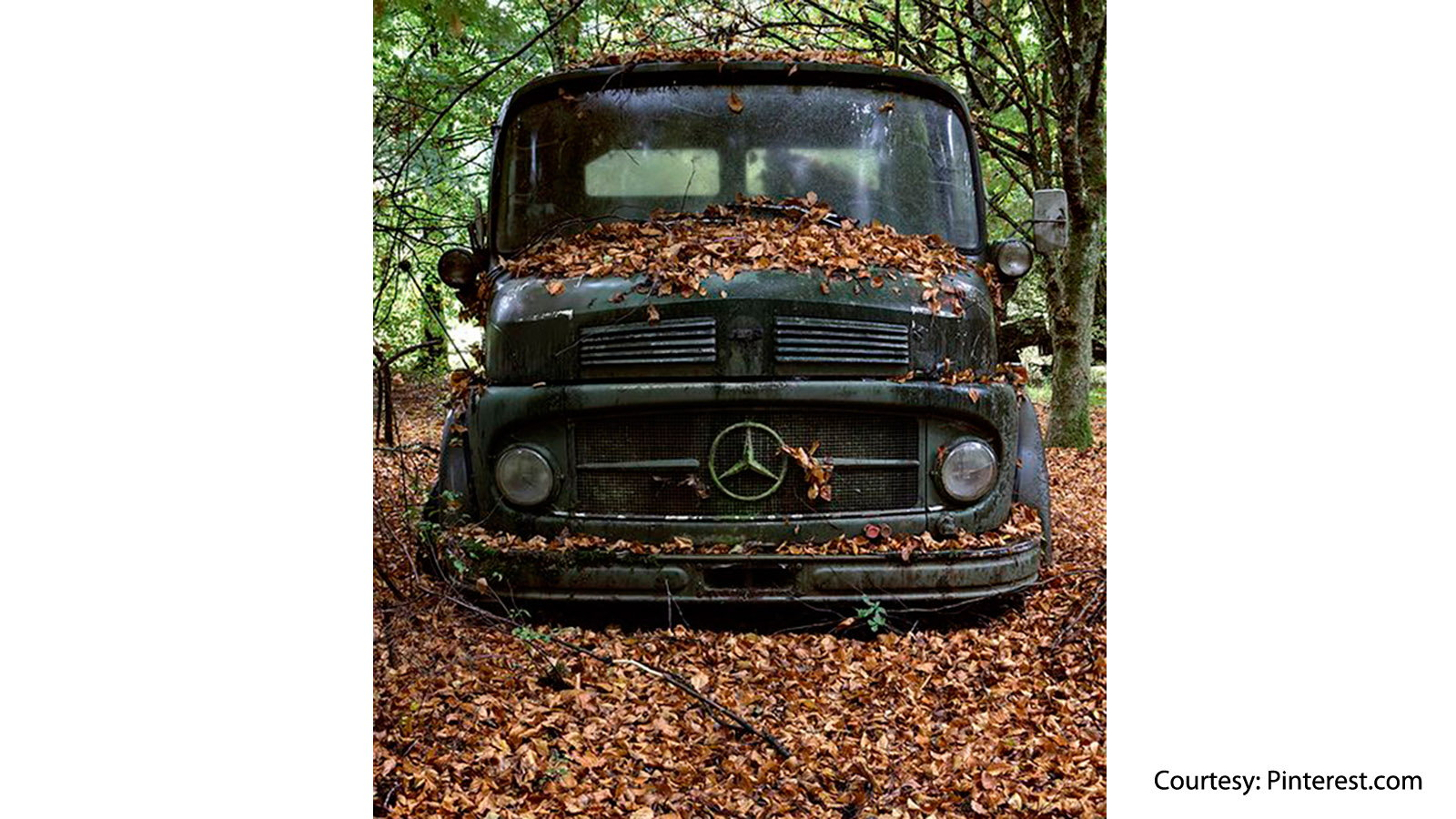 If Jeepers Creepers Drove a Mercedes-Benz
