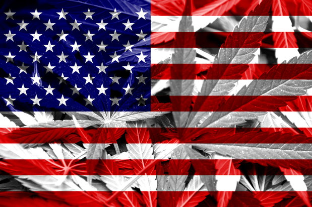 American flag with marijuana plant imprinted