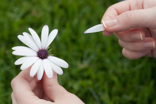 person plucking a flower