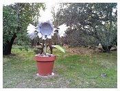2005-01-05 21.28.33.jpg