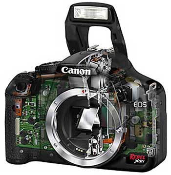 Canon EOS Digital Rebel XSi / EOS 450D