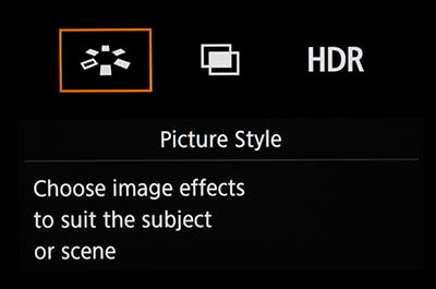 canon_eos_5ds_rec_picture_style.JPG
