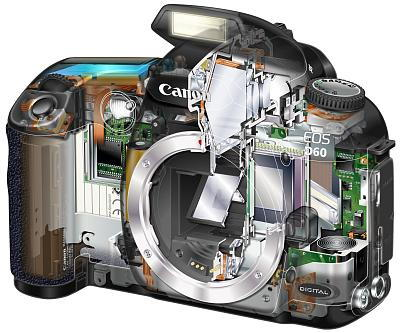 Canon EOS D60, image (c) Canon USA
